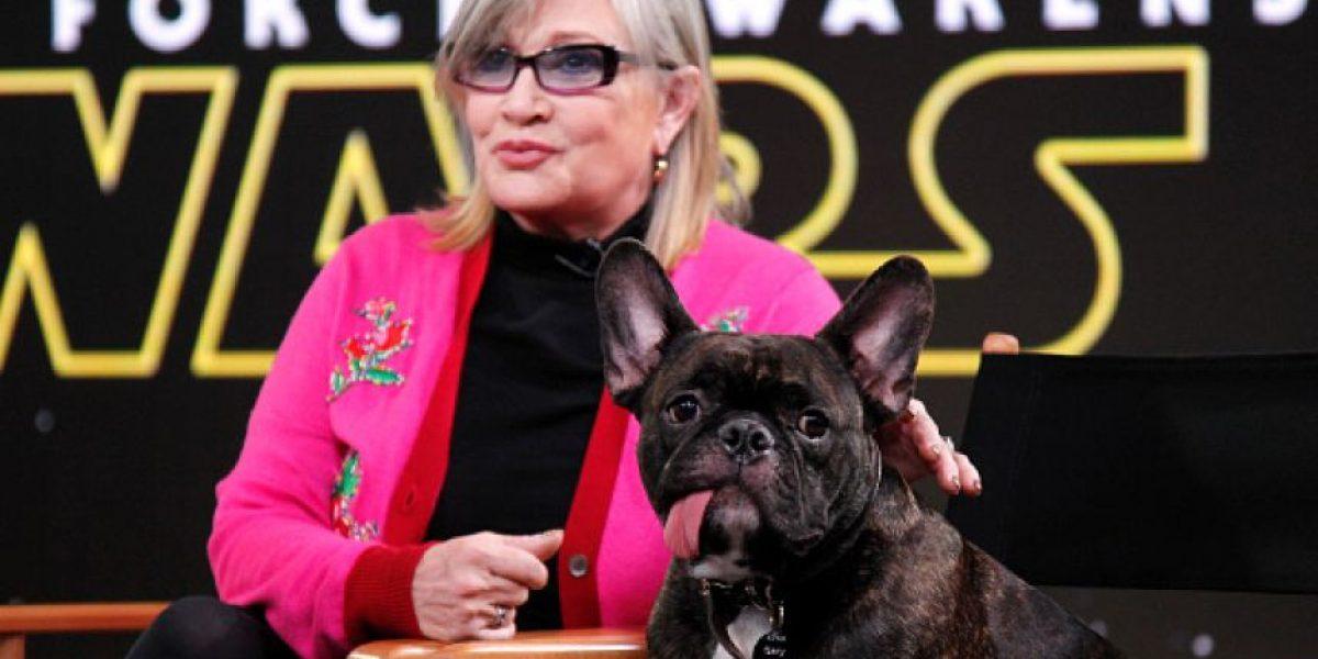 """El perro de Carrie Fisher se """"despide de ella"""" con una emotiva foto"""
