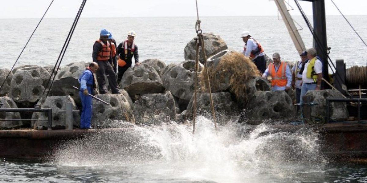 Buscan restablecer fauna marina en Guatemala con arrecife artificial