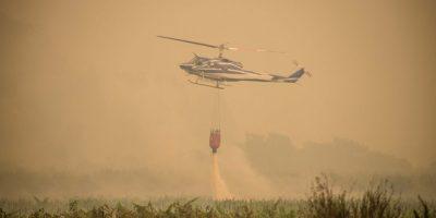 Chile declara el estado de catástrofe por incendios forestales