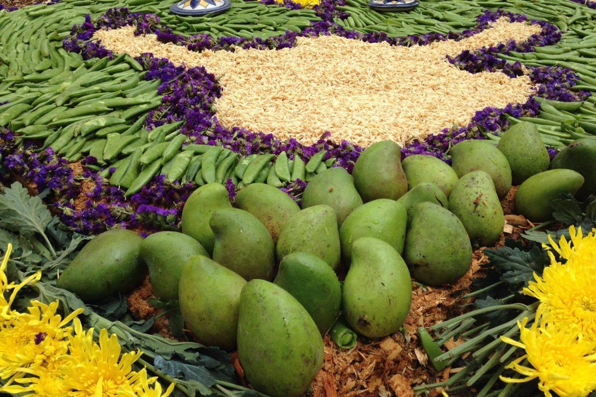 Alfombra hecha con mangos en la Antigua Guatemala. Imagen Por: Foto: Juan Carlos Ramírez