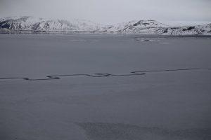 Líneas en el lago Thingvallavatn. Imagen Por: Foto: Facebook / Thingvellir National Park