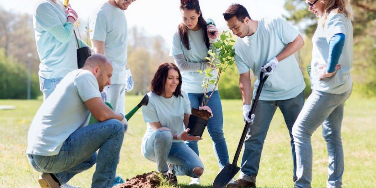 ¿Cuál es la importancia de la Responsabilidad Social Empresarial (RSE) para una empresa?