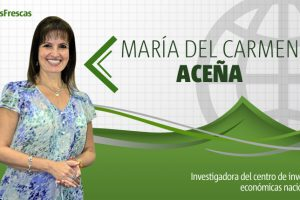 """María del Carmen Aceña: """"Reformas a las reformas"""""""