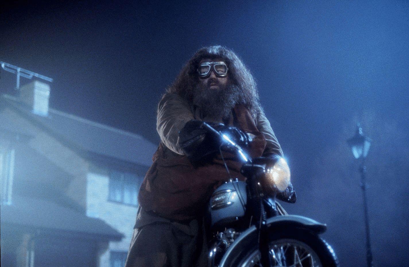 Hagrid, Harry potter, J.K. Rowling, película