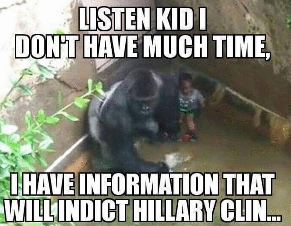Harambe Hillary meme