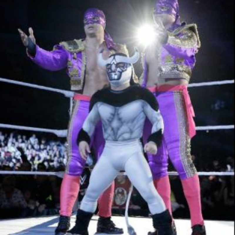 Así lucen las estrellas de WWE sin maquillaje y sin máscara. Imagen Por: WWE