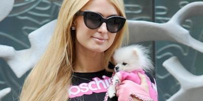 Por qué Paris Hilton ya no es