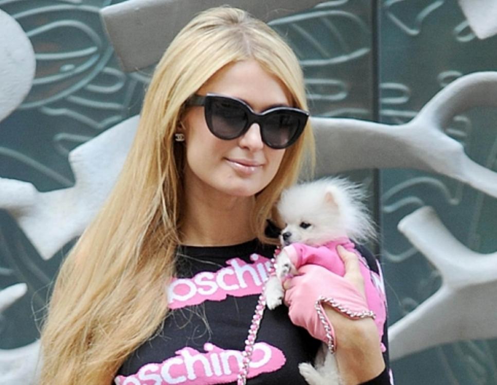 Paris Hilton ya no es nadie