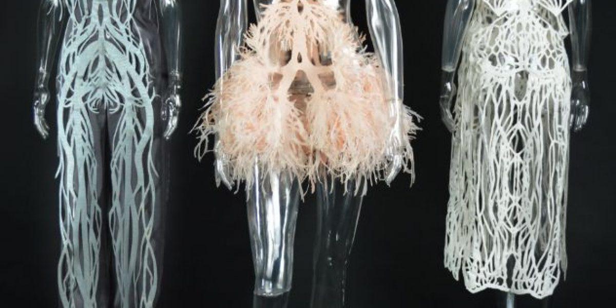 Amy Karle: La belleza del cuerpo humano hecha vestido