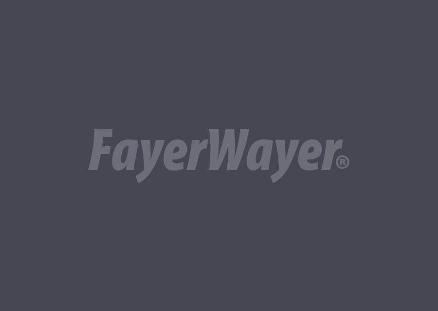 www.fayerwayer.com
