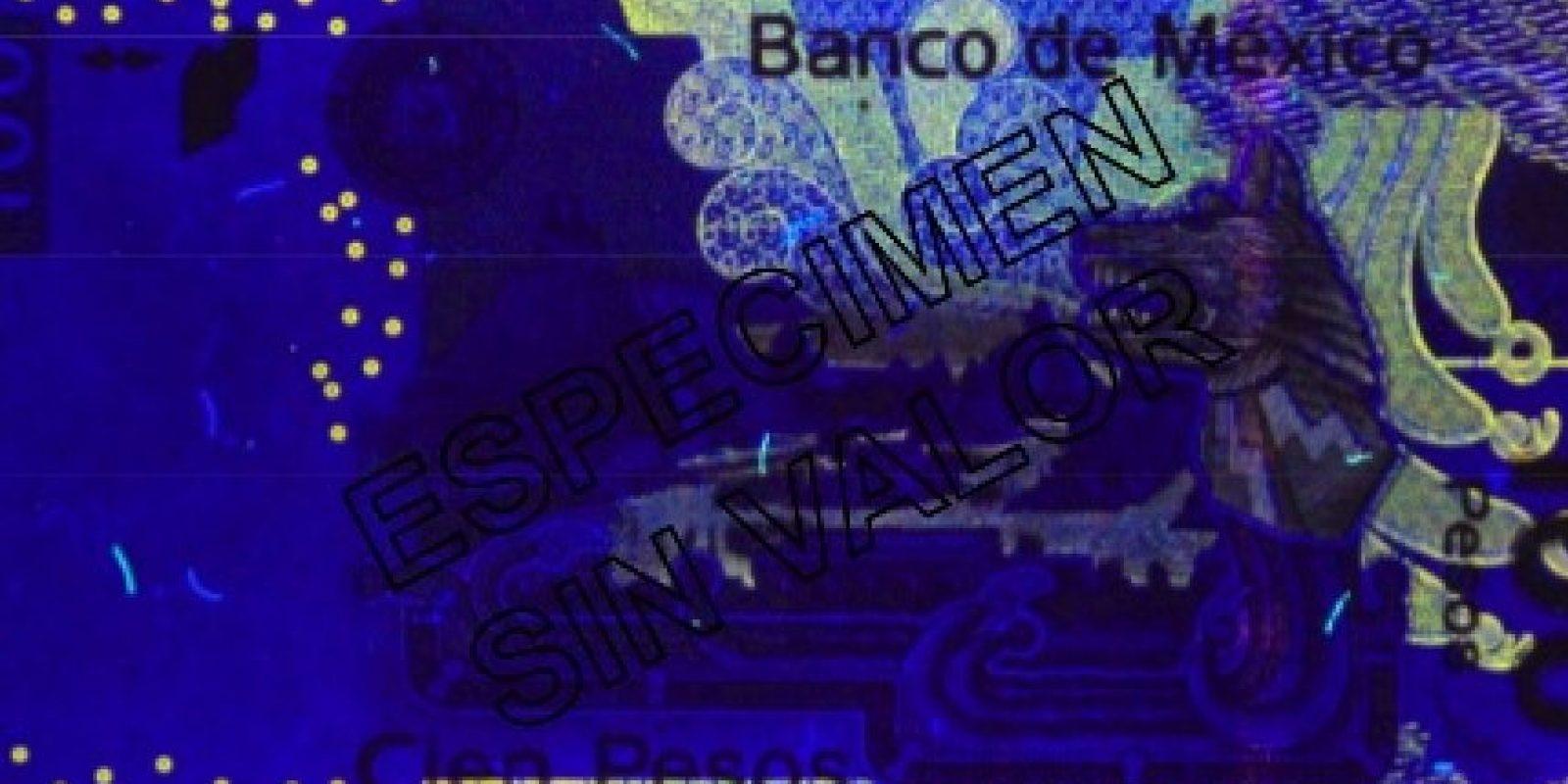 Probador lámpara dinero falso billete revisor luz negra prüfstif lámpara