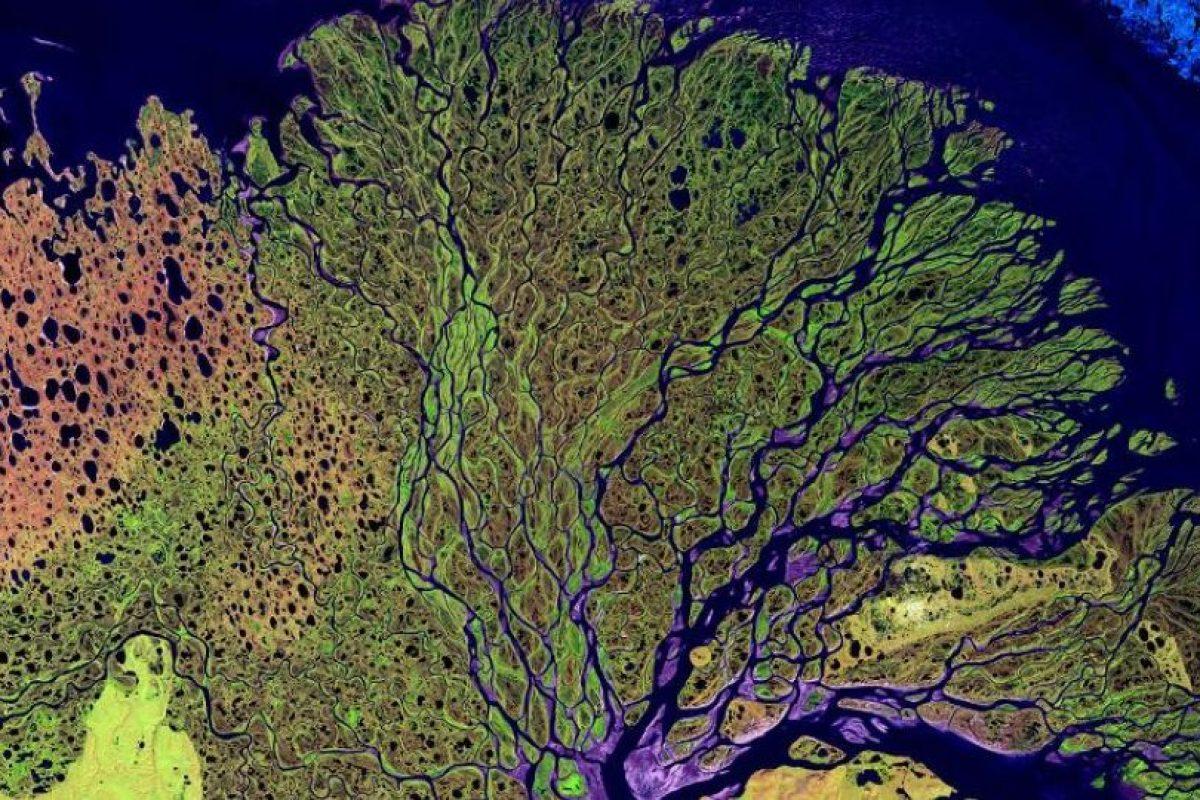 Río Lena, en Siberia, que desemboca en el océano Ártico Foto:NASA. Imagen Por: