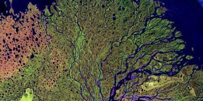 Río Lena, en Siberia, que desemboca en el océano Ártico Foto:NASA