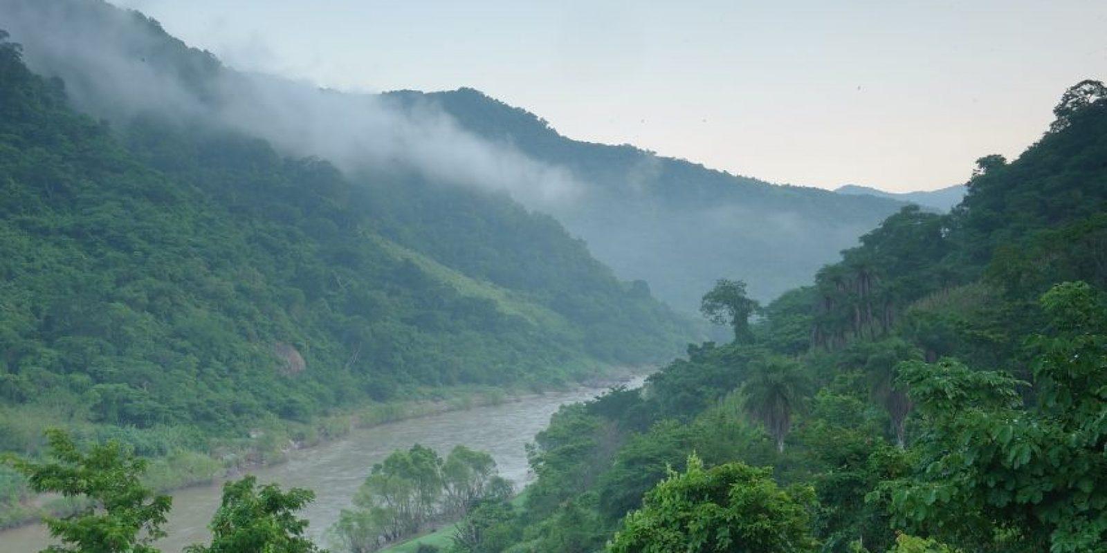 Vista del río San Pedro Mezquital, de 540 Km de longitud, en su paso por las fértiles tierras. Único río en México que cruza la sierra Madre Occidental libre de presas y los estados de en Durango, Nayarit y Zacatecas.  Foto:Imagen: (C) Jaime Rojo/WWF