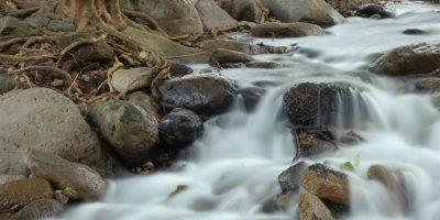 En Nayarit es donde el río San Pedro es más caudaloso gracias a los arroyos que vienen de la sierra y a la gran cantidad de lluvia que cae en esta región Foto:© Jaime Rojo/WWF