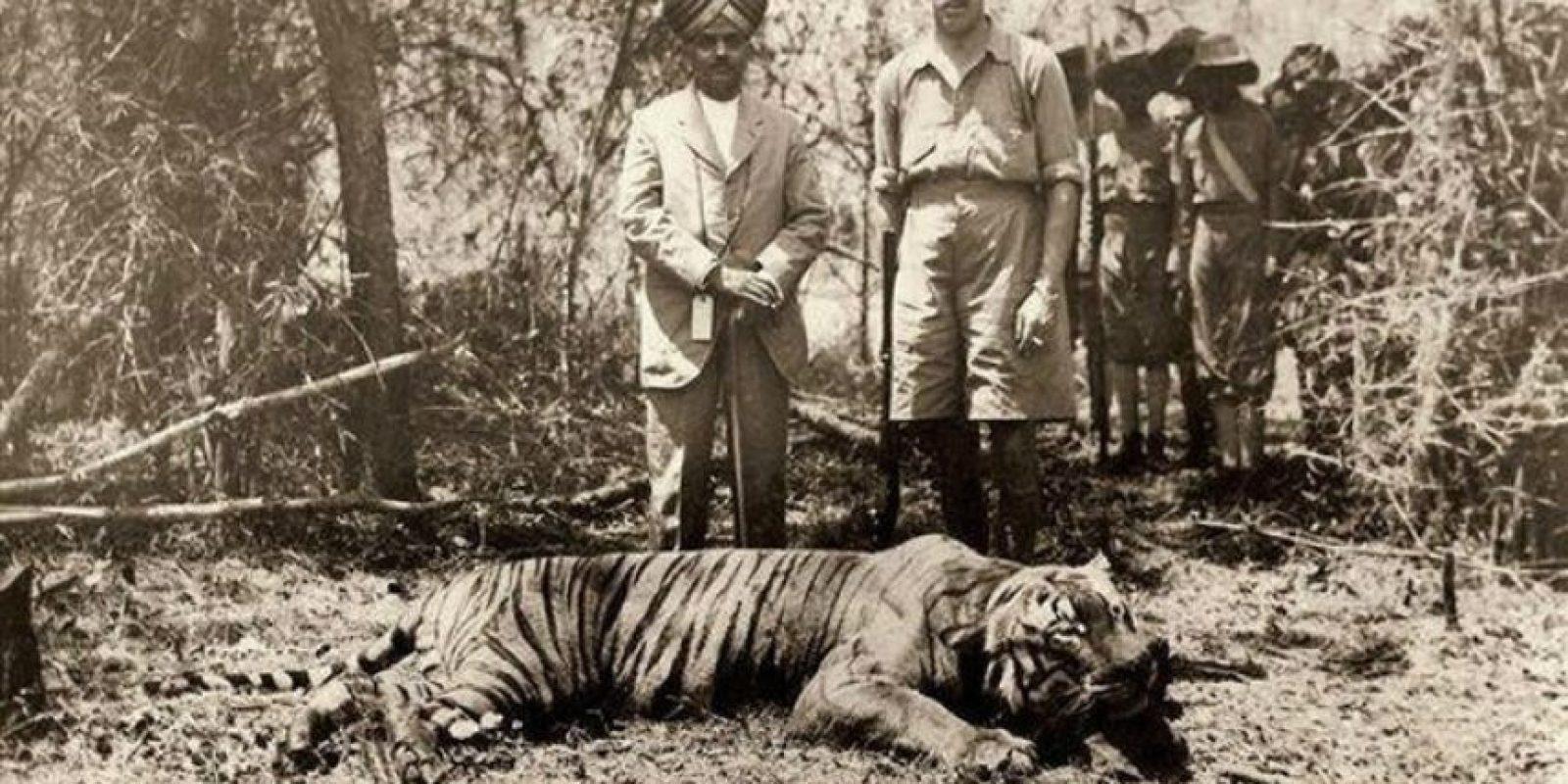 El rey de España, cazando tigres en India en 1933. Cómo hemos progresado desde entonces Foto:Twitter