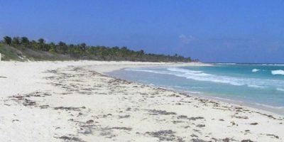 Xcacel, Quintana Roo Foto:Tomada de internet