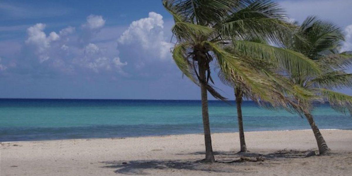 Las playas vírgenes están de moda