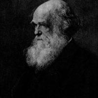 Charles Darwin Foto:Clipart