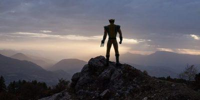 Wolverine Foto:Benoit Lapray