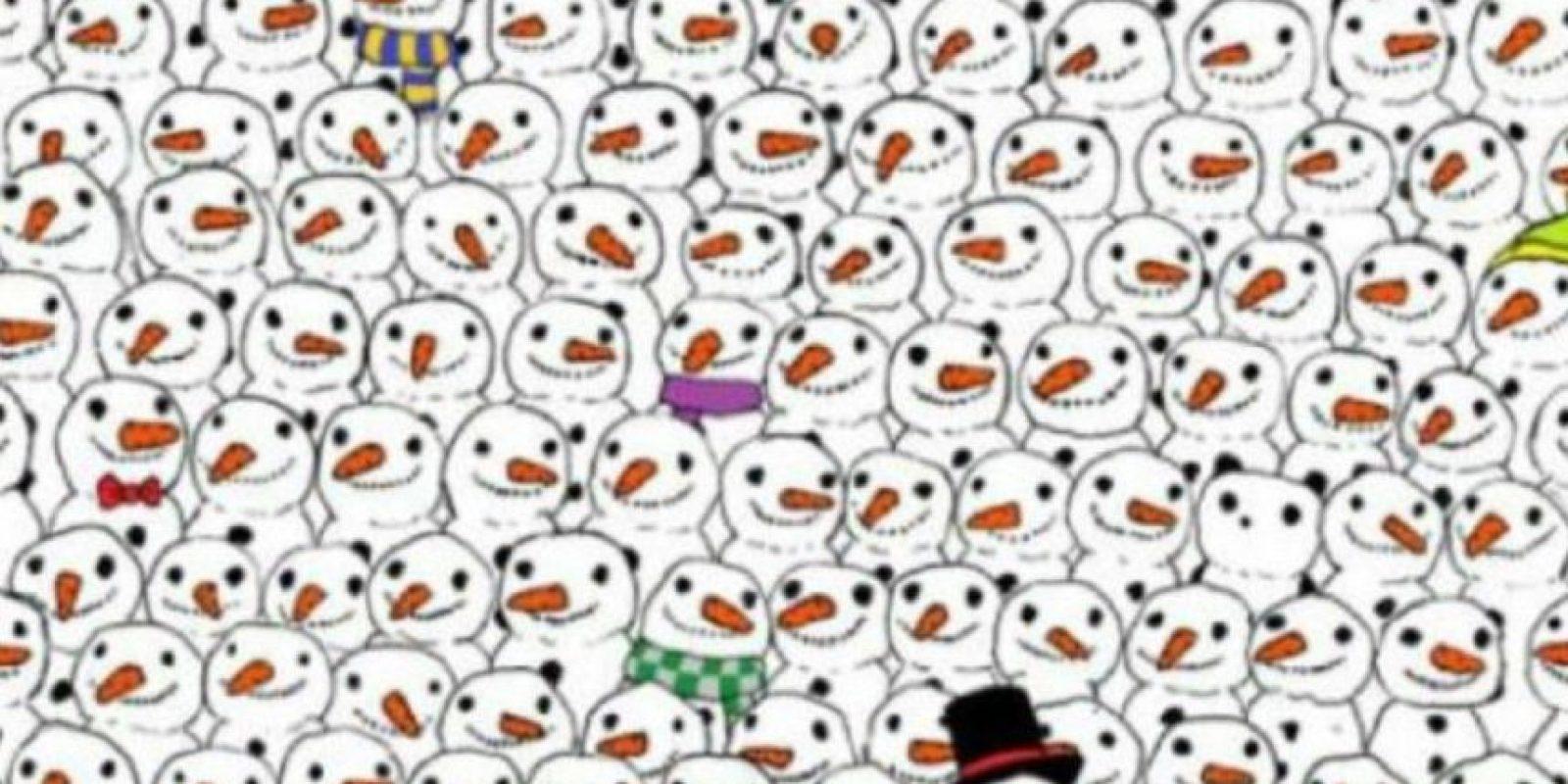 ¿Dónde está el panda? Foto:Twitter