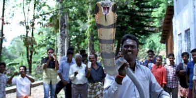 Se llama Vava Suresh. Foto:vía Facebook