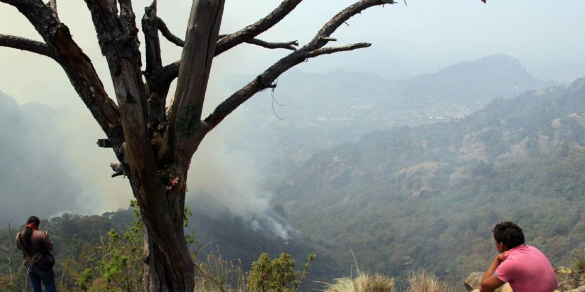 Reanudan acciones para combatir incendio en Tepoztlán
