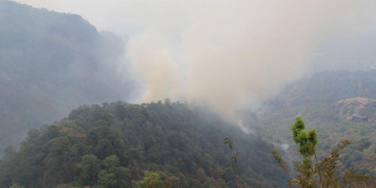 Profepa interpone denuncia por incendio en el Tepozteco