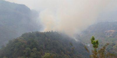 El incendio en el Tepozteco afectó hasta 250 hectáreas. Foto:Cuartoscuro