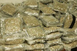 La cannabis es la sustancia psicoactiva más utilizada globalmente Foto:Getty Images