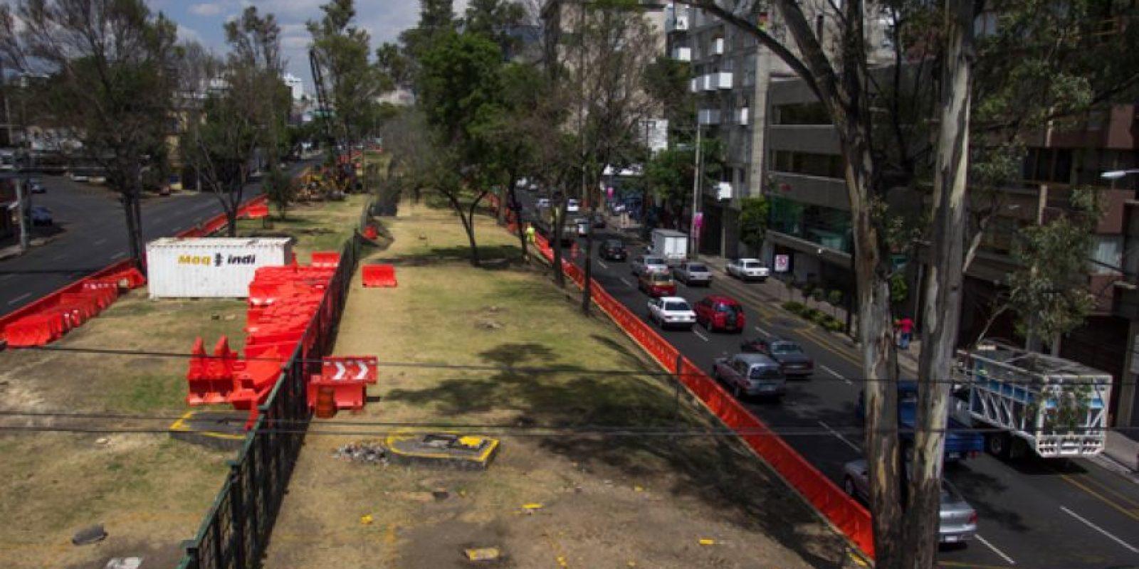 Piden actualizar el inventario de áreas verdes ya que ha sufrido grandes cambios debido al crecimiento urbano Foto:Cuartoscuro