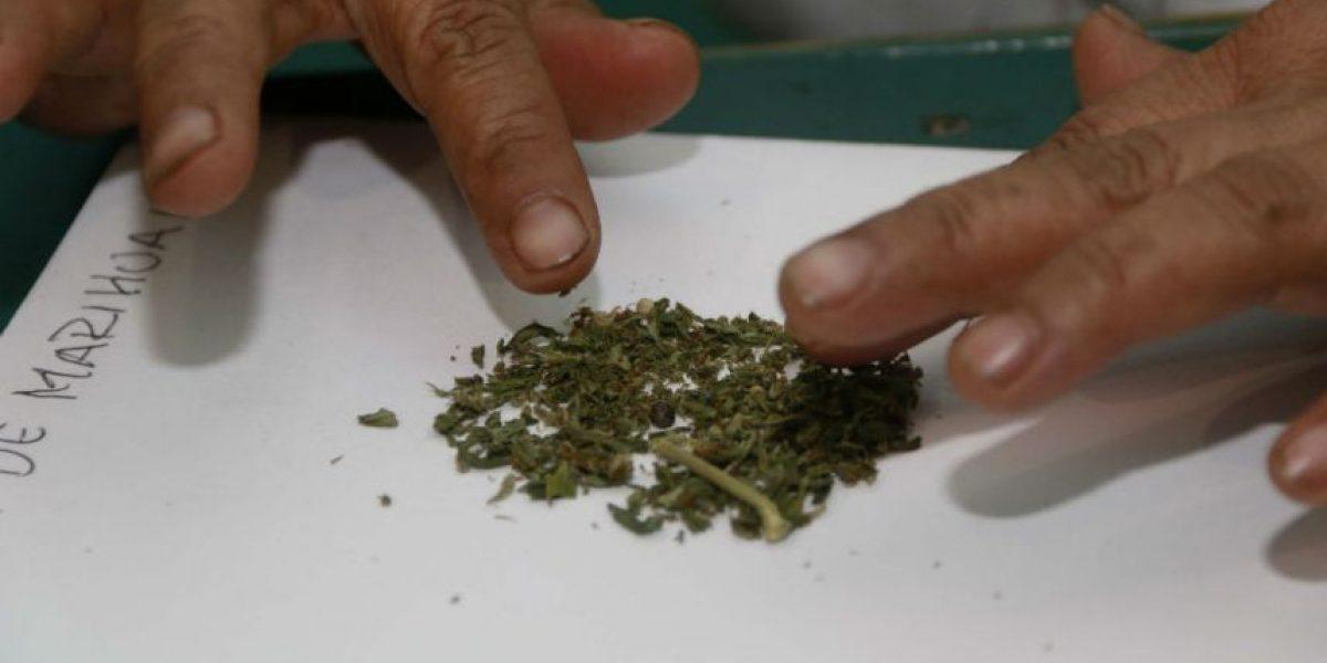 Peña propone elevar a 28 gramos portación permitida de marihuana