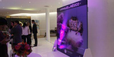 Habrá cinco conferencias magistrales para aprender más de la biodiversidad mexicana. Foto:Cecilia Arce