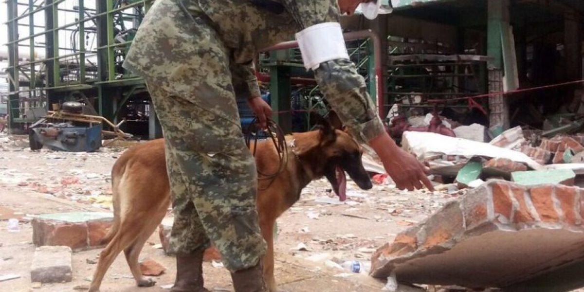 Identifican a 26 de los 28 muertos por explosión en Pajaritos