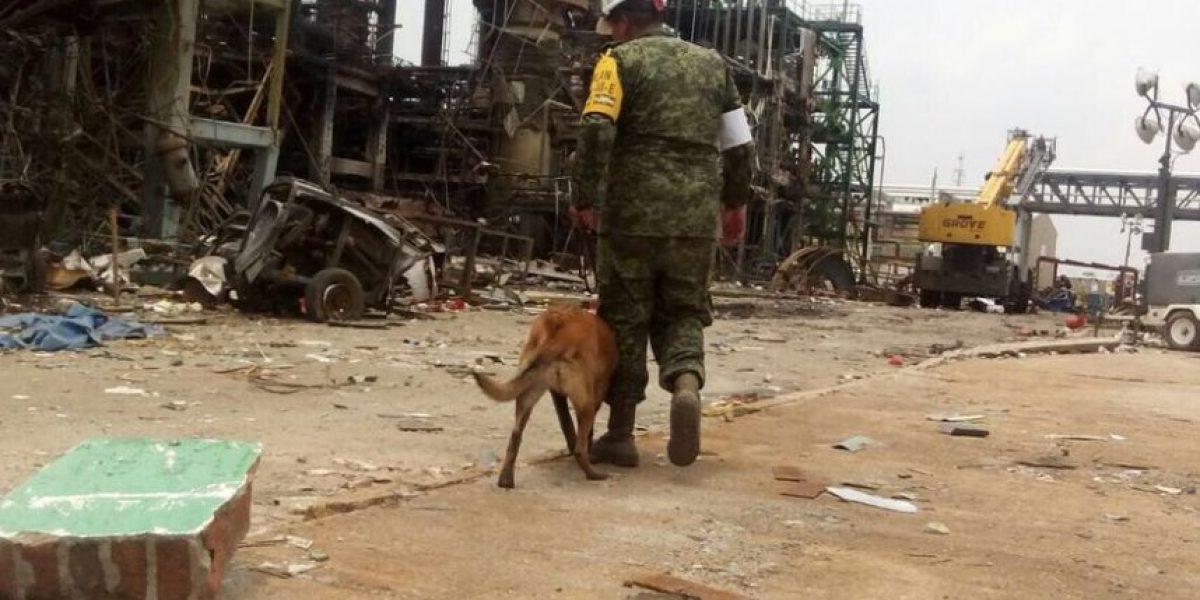 Hallan cuatro cadáveres más en Pajaritos; ya suman 32 muertos