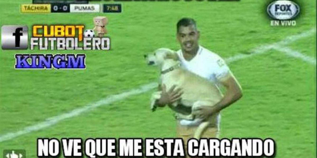 Con memes se burlan de la derrota de Pumas ante el Táchira de Venezuela
