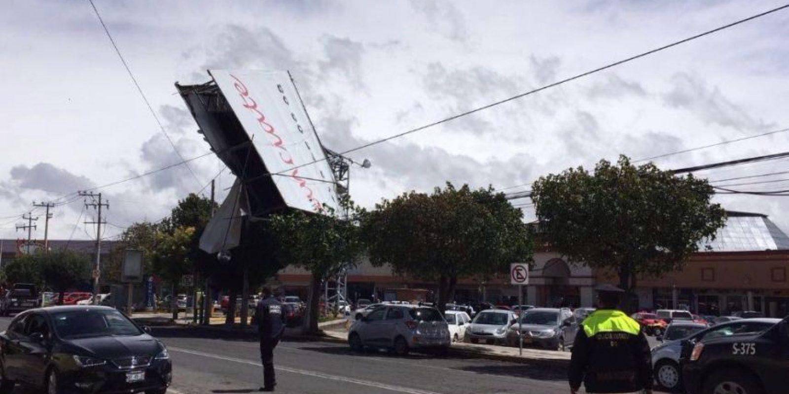 El organismo acusó que en la Ciudad de México abundan las vallas publicitarias ilegales Foto:Tu México Limpio