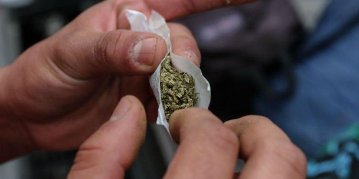 Senado podría aprobar este viernes ley para despenalizar marihuana