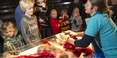 Algunos niños miraban con fascinación y otros se cubrían el rostro, específicamente la nariz y los ojos. Foto:AFP