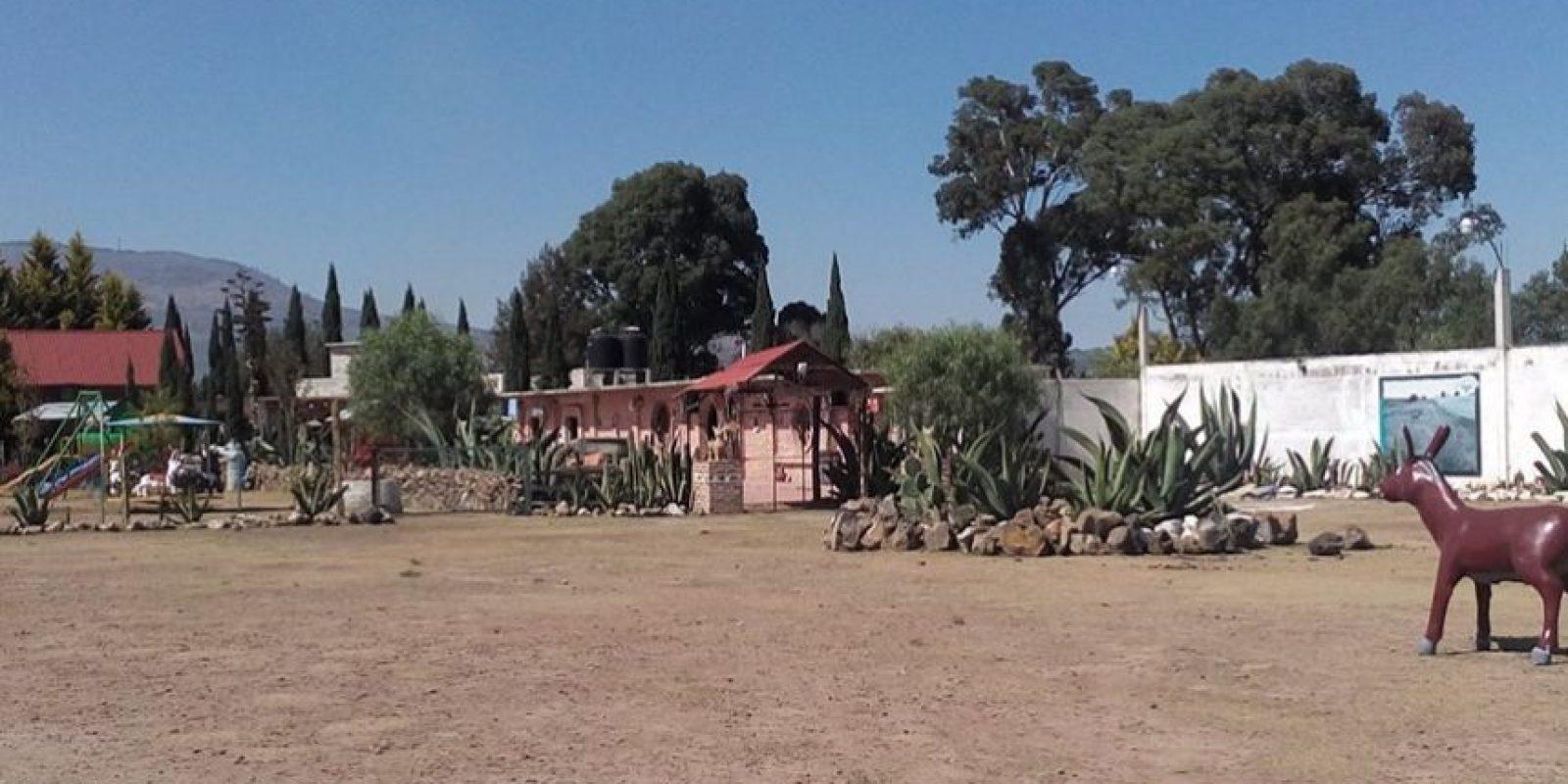 Foto:www.facebook.com/burrolandia.mexico