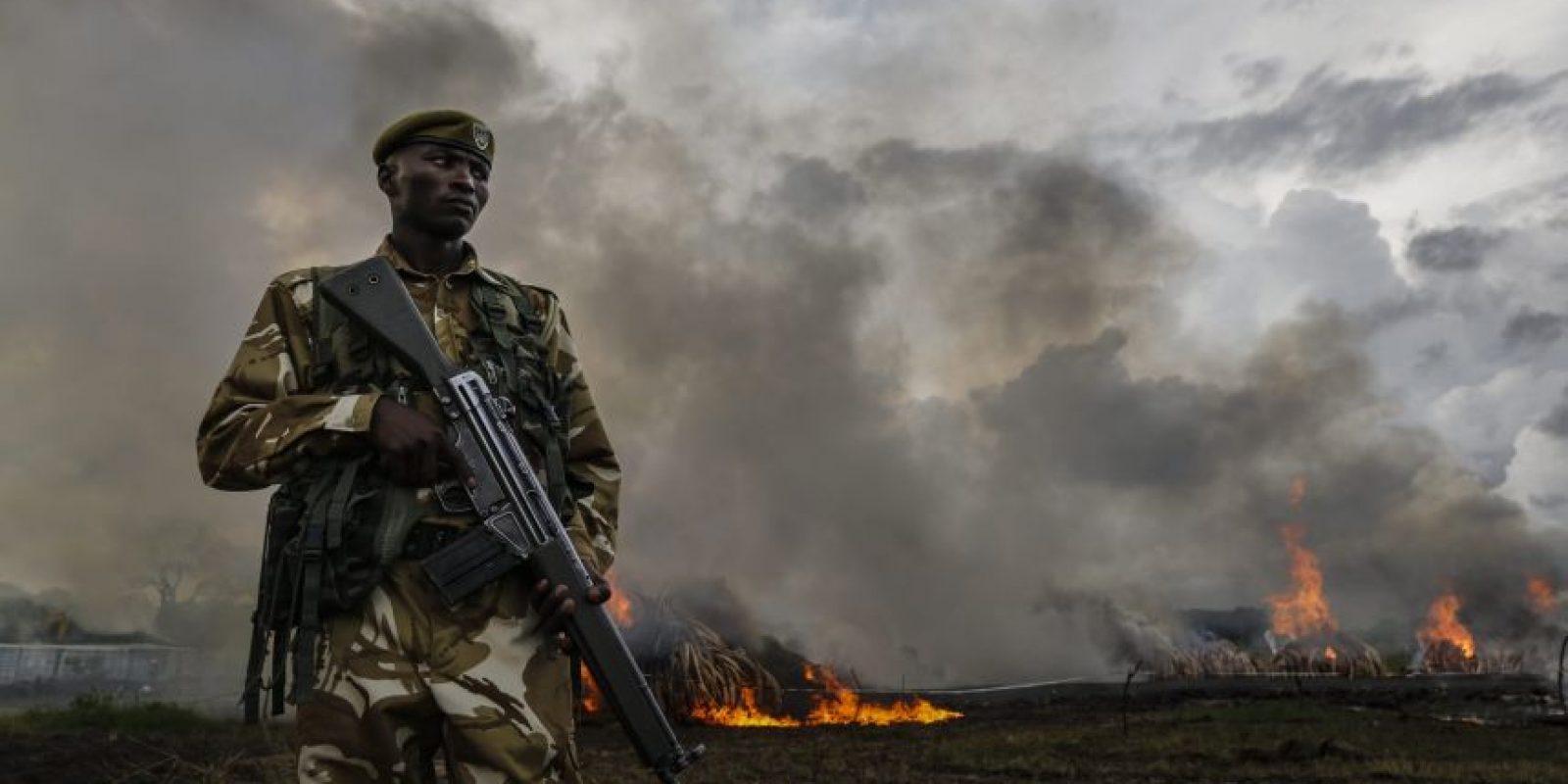 El gobierno de ese país se comprometió a lograr una prohibición total en el trafico de marfil Foto:efe