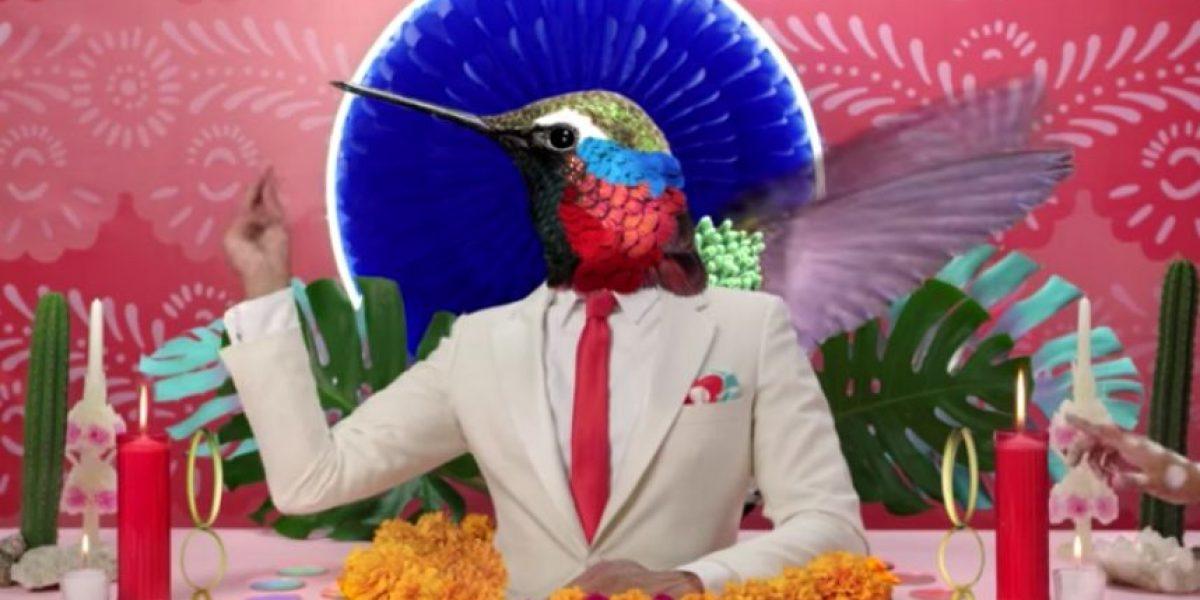 Luiza, el colorido espectáculo de Cirque du Soleil inspirado en México