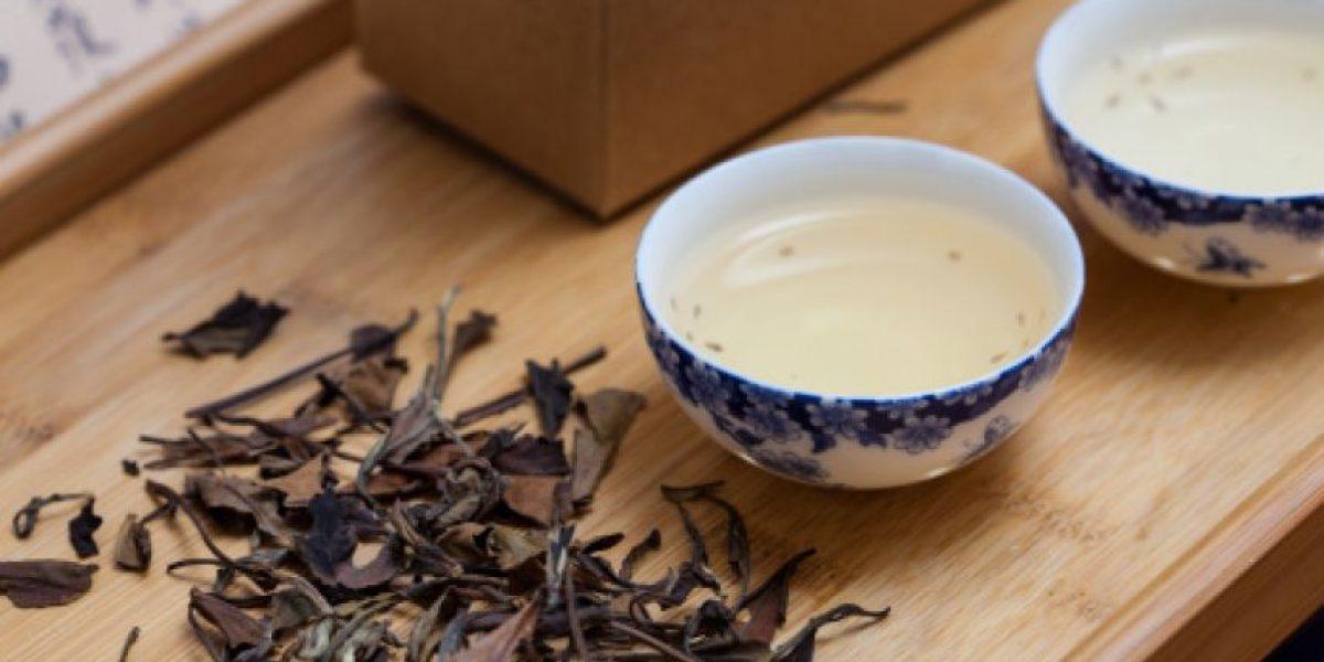 Beneficios de tomar té blanco