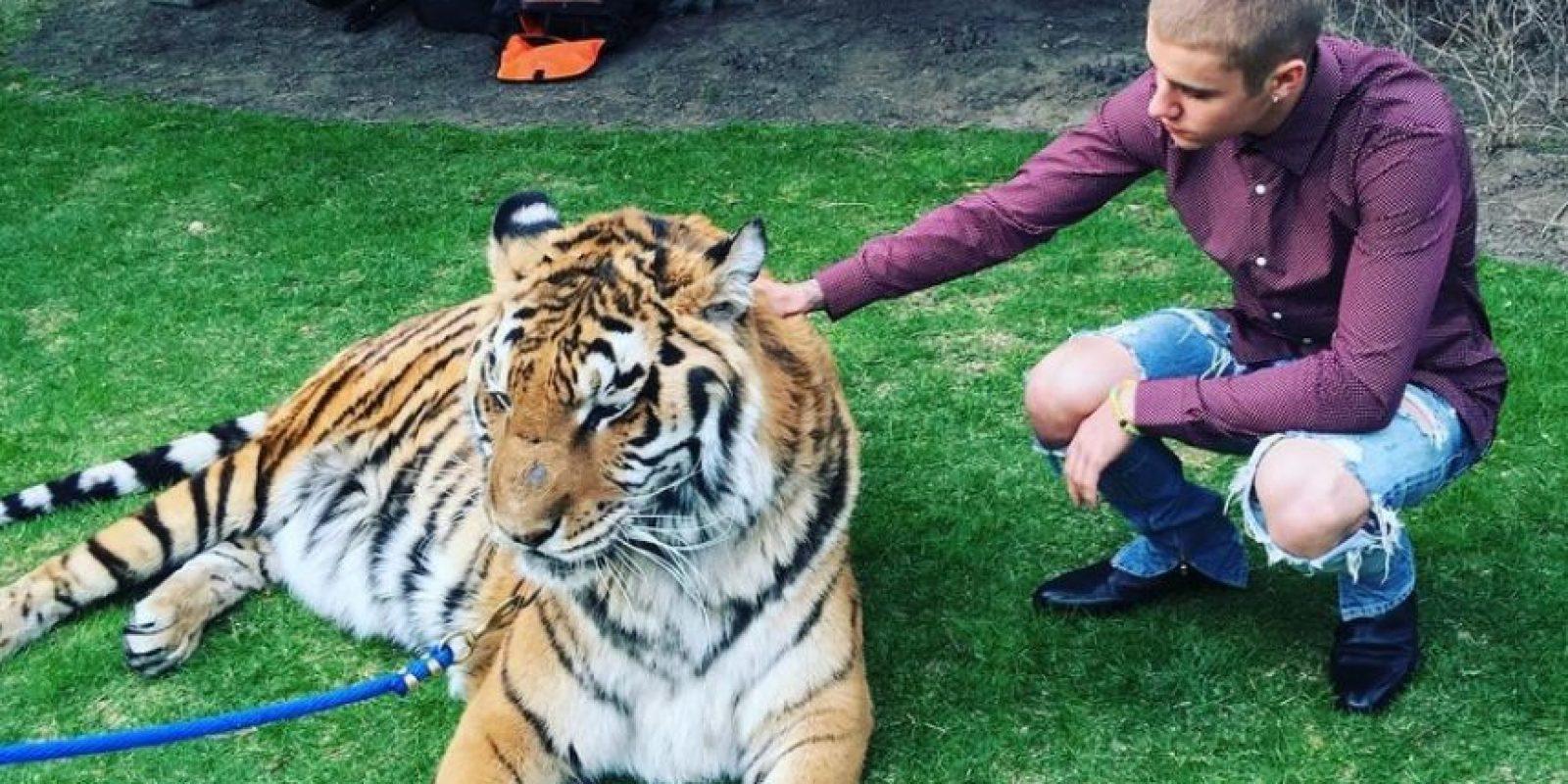 Con un tigre Foto:Vía Instagram/@justinbieber