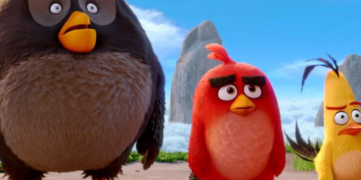 """""""Angry birds"""" fomenta trabajo en equipo y tolerancia"""