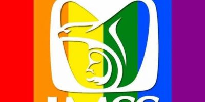 El IMSS celebró el día y colocó mensajes en sus redes sociales dirigidos s la comunidad LGBT Foto:@Tu_IMSS