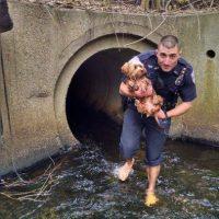 El agente Joe Brazil se volvió súper héroe luego de rescatar a un pequeño perro de un túnel. Foto:Vía Facebook
