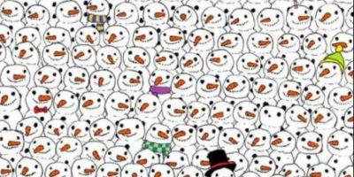 Encuentren al panda Foto:Twitter