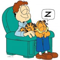 Foto: Facebook/Garfield