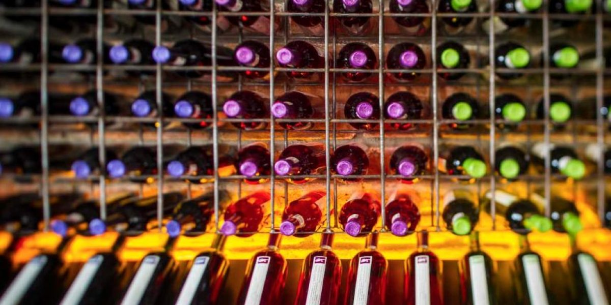 Tierra México, un festival que todo amante del vino debe disfrutar